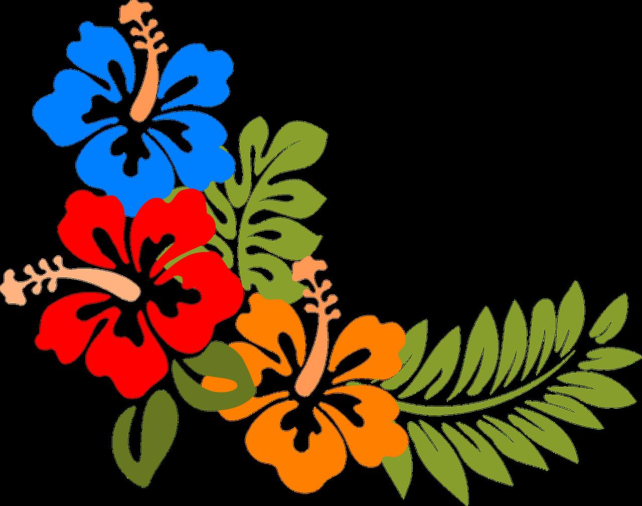 hibiscus-303191_1280